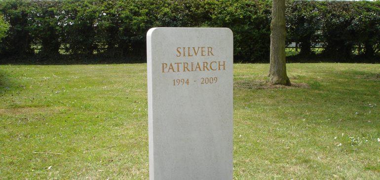 Silver Patriarch
