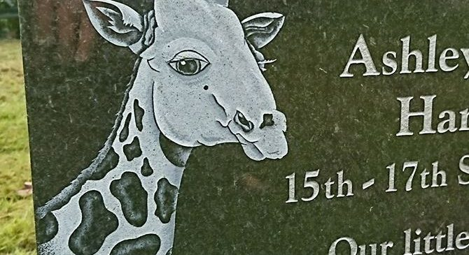 Ashley's Giraffe Memorial